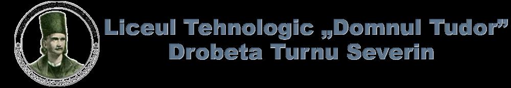 "Liceul Tehnologic ""Domnul Tudor"""